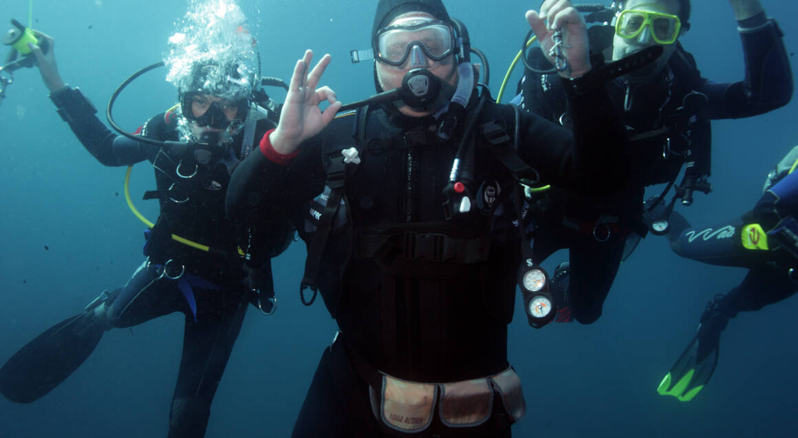 Certified Diving with Hammerhead Sharks - Full Day