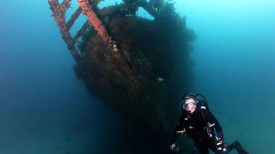Dive the Rainbow Warrior Shipwreck - Full Day