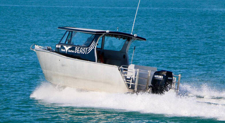 Private Group Fishing Charter Auckland - Full Day - For 8