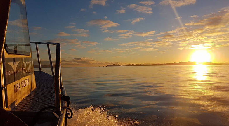 Private Group Fishing Charter Auckland - Half Day - For 8