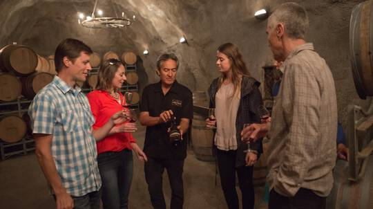Scenic Queenstown Winery Tour with Tastings
