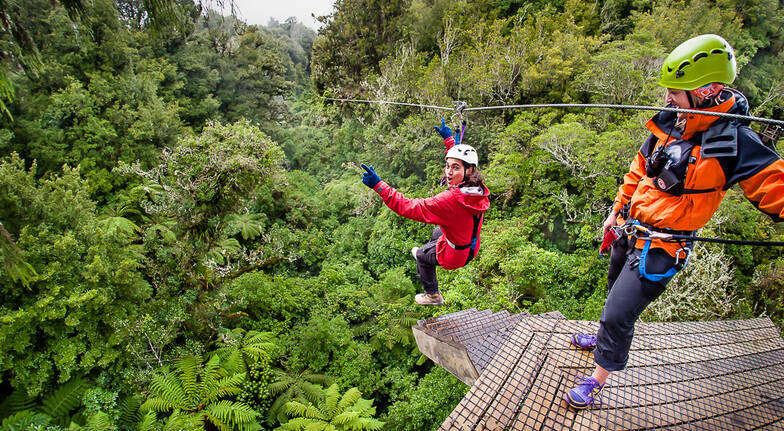 Epic Ziplining Adventure Amongst the Treetops