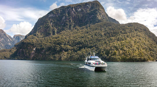 Doubtful Sound Coach and Wilderness Cruise from Te Anau