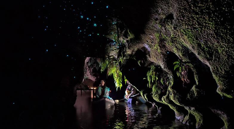 Rotorua Glowworm Guided Kayaking Tour