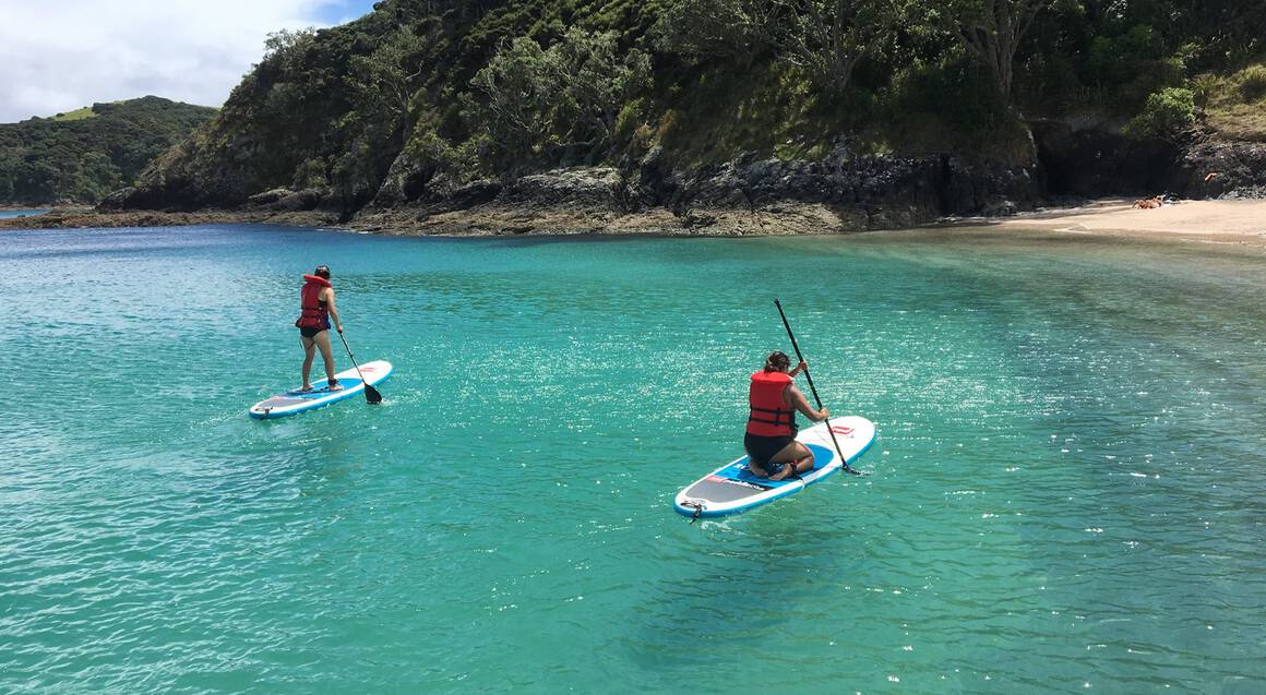 Bay of Islands Cruise with Snorkeling and Paddleboarding