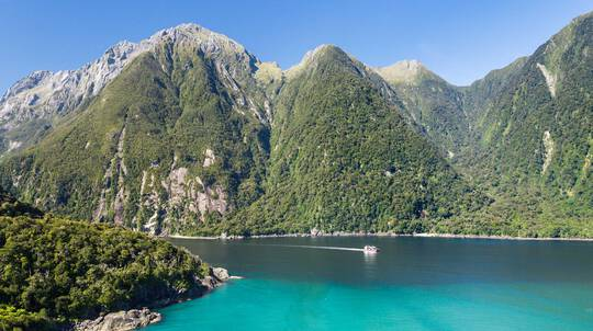 Milford Sound Scenic Catamaran Cruise