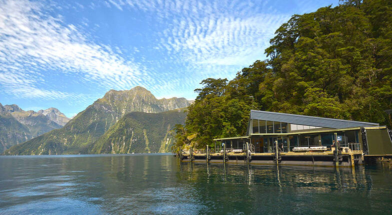 Cruise on Milford Sound with Kayaking Lunch and Observatory