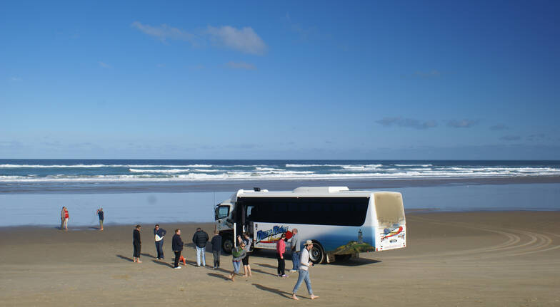 Far North Dune Rider Tour and Discover the Bay Cruise Combo