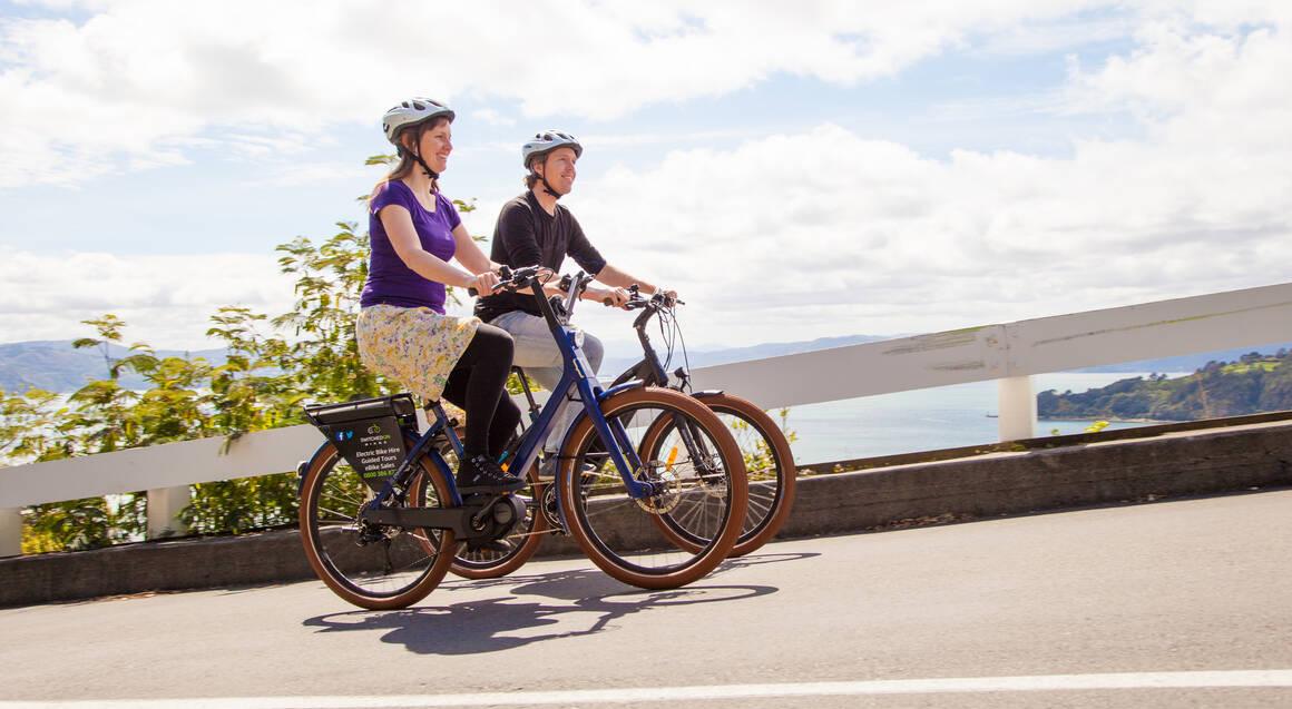 Wellington Electric Bike Hire - Full Day