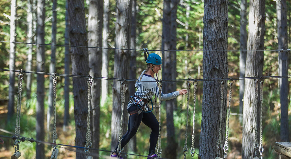 High Ropes Adventure - Tree Hugging