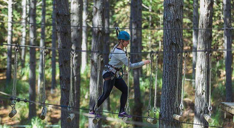 High Ropes Adventure  Monkeyn Around