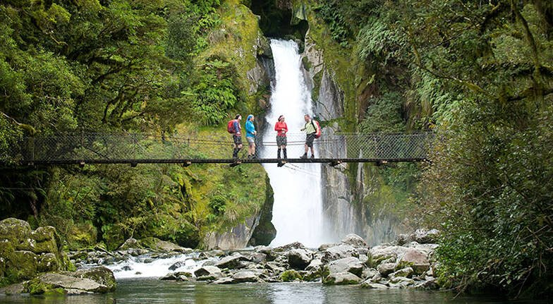 Guided Walk on the Milford Track and Milford Cruise
