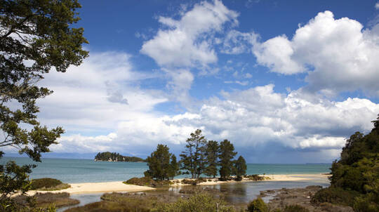 Abel Tasman and Golden Bay in One Day Guided Tour
