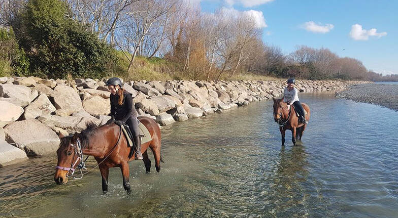 Christchurch Horse Ride with River Crossing - 2 Hours