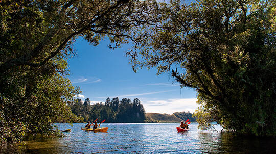 Lake Rotoiti Hot Pool and Glow Worm Kayak Tour - 3.5 Hours