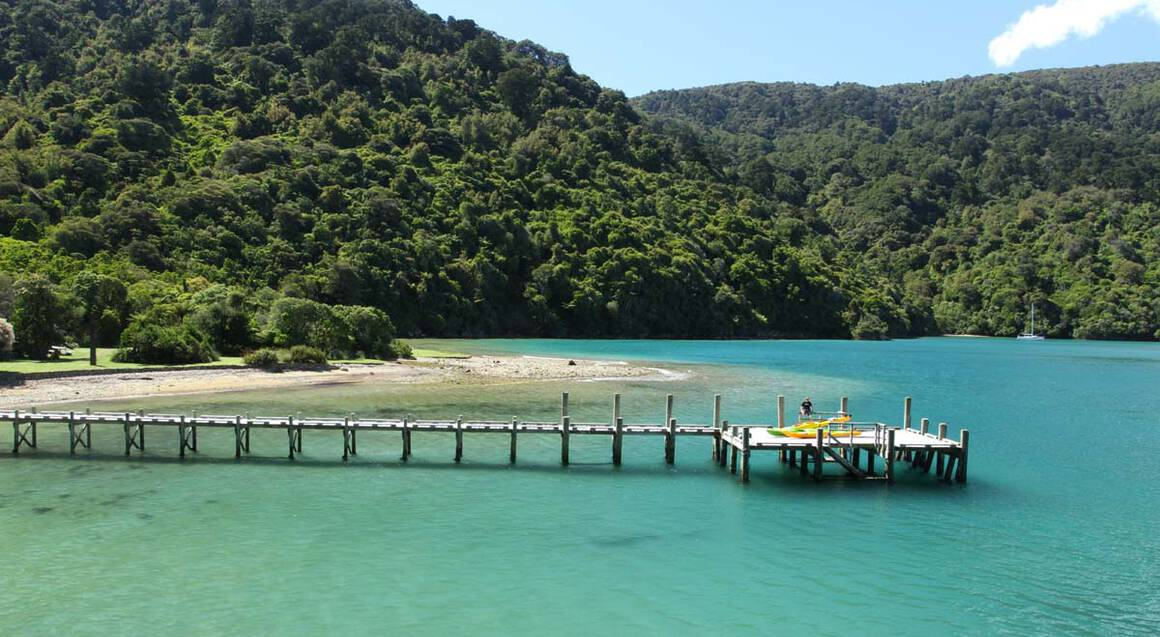Guided Kayak Tour of Queen Charlotte Sound - Full Day