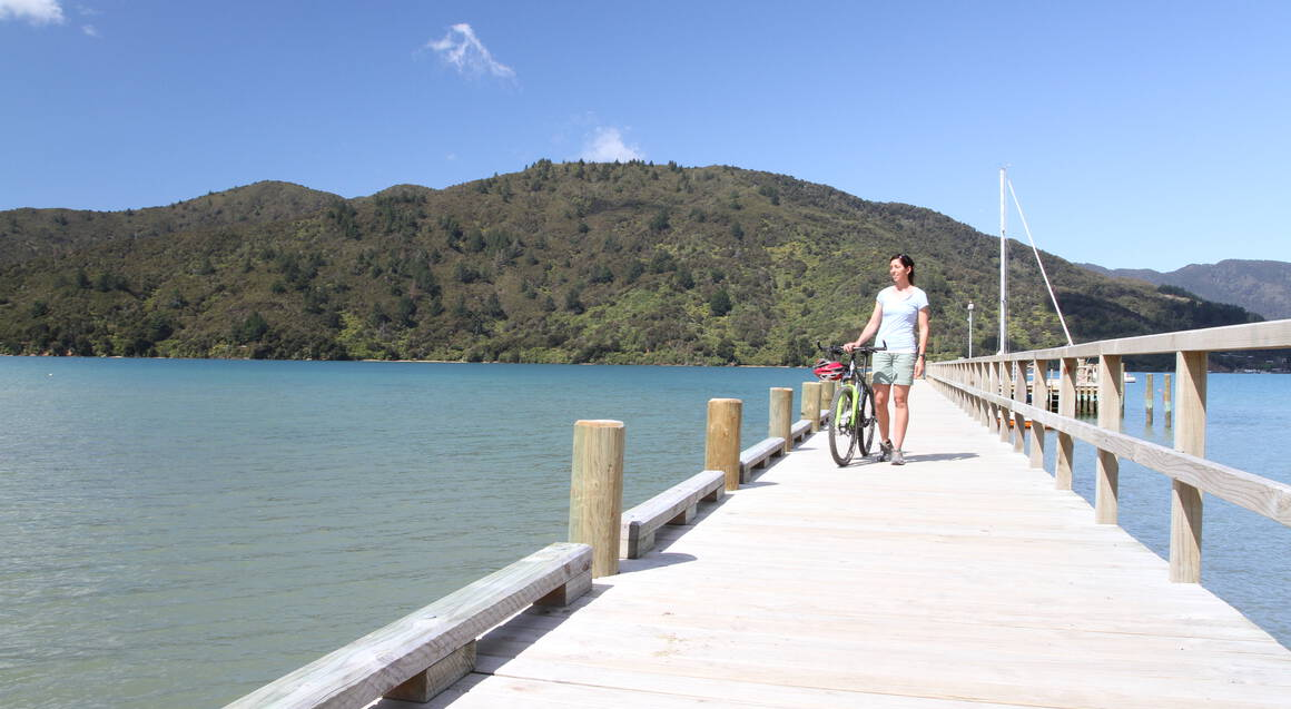 Self Guided Cycle Tour of Queen Charlotte Track