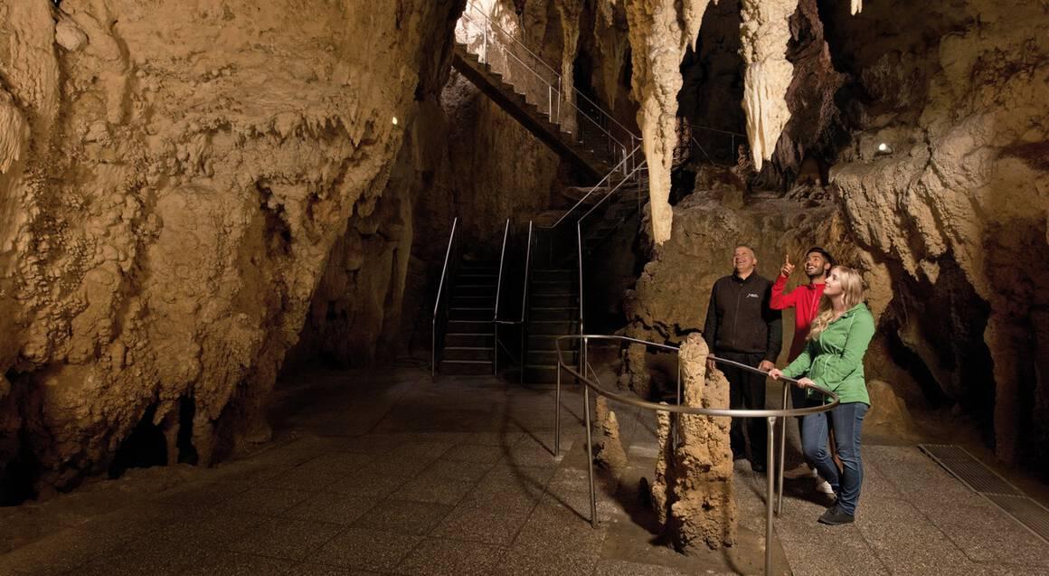 Waitomo Glowworm Cave Tour - Adult