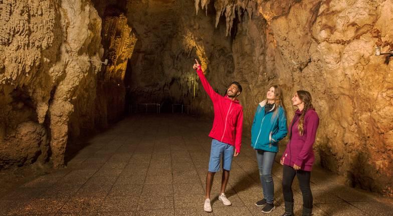 Waitomo Glowworm Cave Tour - Family