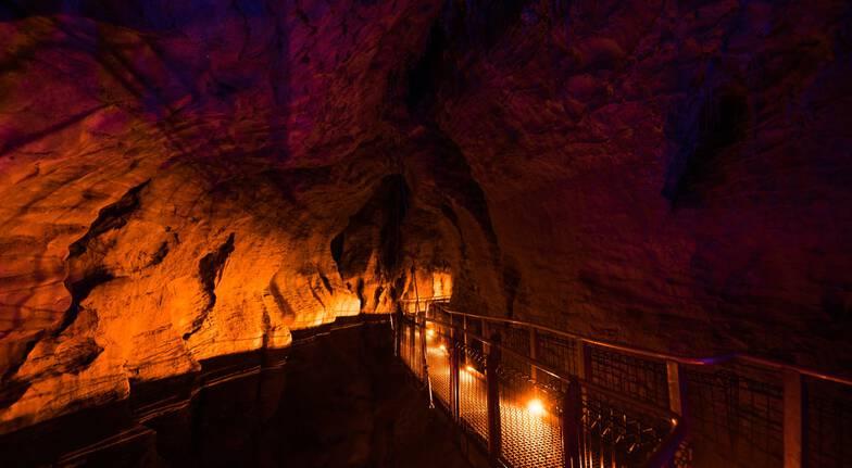 Ruakuri Cave Guided Tour - Child