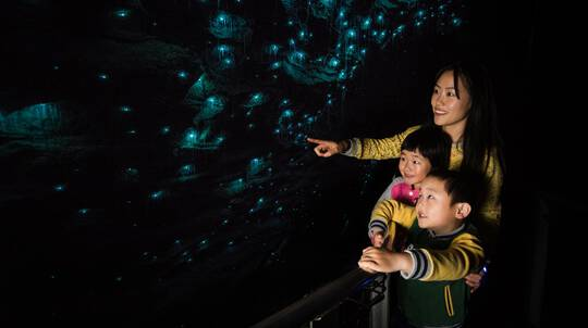 Ruakuri Cave Guided Tour - Family