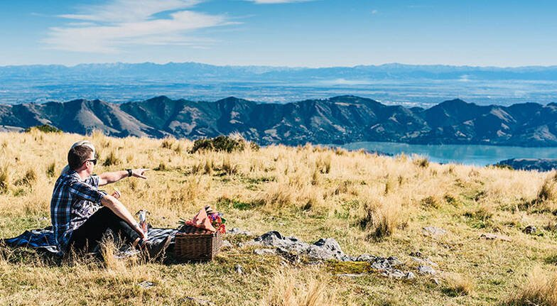 Christchurch Scenic Flight with Food Platter and Wine- For 2