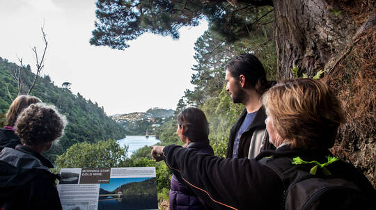 Guided Twilight Tour of Zealandia