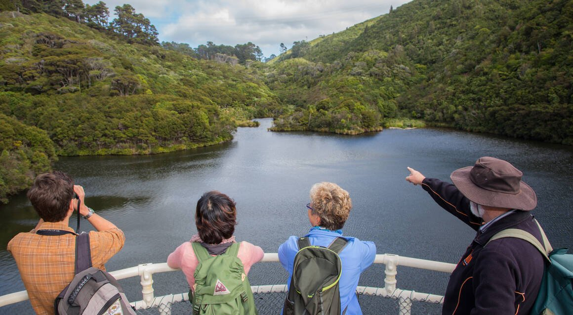 Zealandia Sanctuary Tour with Lunch and Wine or Beer