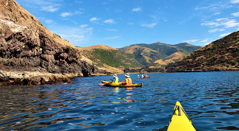 Scenic 4WD and Sea Kayaking Tour  4 Hours