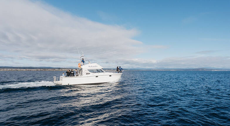3 Hour Fishing Charter on Lake Taupo  For up to 10