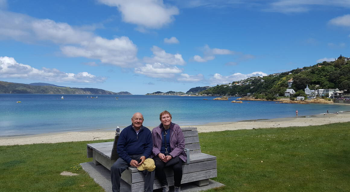 From Cave to Coast Wellington Highlights Tour with Lunch